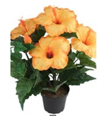 Fleurs Hibiscus Artificiel Orange Safran en pot H 40 cm