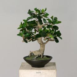 Ficus Bonsaï Artificiel H 45 cm en pot céramique