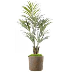 Kentia artificiel Palmier en pot 150 cm