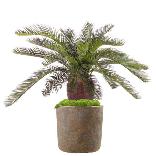 Cycas Artificiel Palmier en pot H 70 cm
