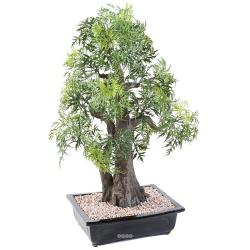 Bonsaï Aralia Artificiel H 80 cm D 50 cm en pot