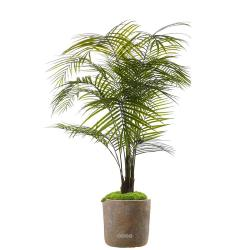 Palmier Areca artificiel anti-UV en pot H 175 cm