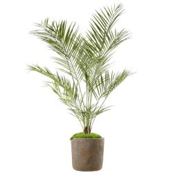 Areca Artificiel Palmier en pot H 180 cm Anti-UV