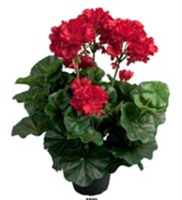 Geranium Artificiels Rouge en pot H 35 cm
