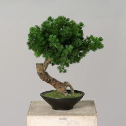 Pinus Bonsaï Artificiel H 38 cm en pot