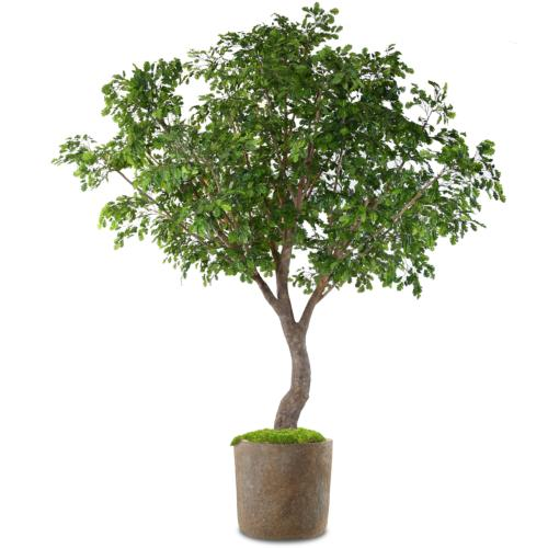 Chêne Artificiel Arbre en pot H 360 cm