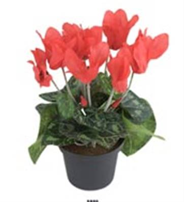 Fleurs Cyclamen Artificiel Rouge en pot H 20 cm