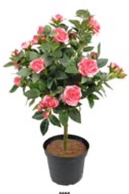 Rosier Artificiel Rose soutenu en boule sur tronc en pot H 42 cm