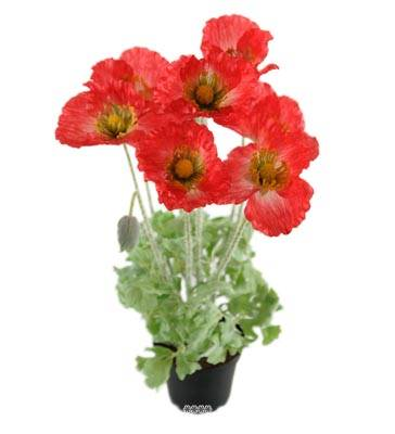 Fleurs Pavot Artificiel Rouge en pot H 45 cm