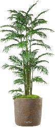 Areca Artificiel Palmier en pot H 230 cm multi-troncs