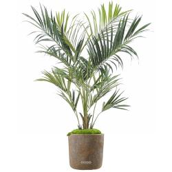 Palmier Kentia Artificiel Royal en pot H 180 cm Vert