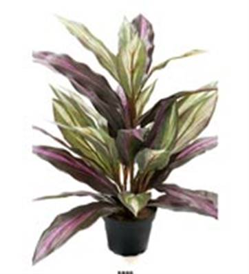 Plante Dracaena Artificiel en pot H 40 cm